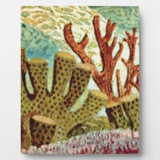 Schwämme und Koralle Fotoplatte