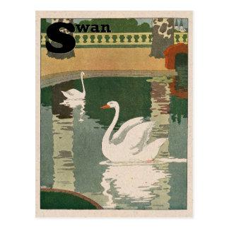 Schwan-Alphabet Postkarte