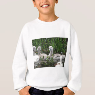 Schwan im Wunder Sweatshirt
