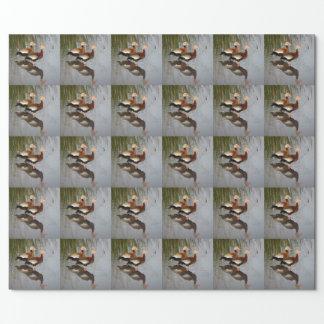Schwarz-aufgeblähte pfeifende Ente Geschenkpapier