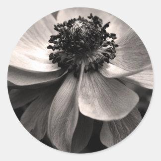 Schwarz-weißer Anemonen-Beileids-Aufkleber Runder Aufkleber