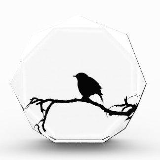 Schwarz-weißer Entwurf der Vogelkunst-Inspiration Auszeichnung