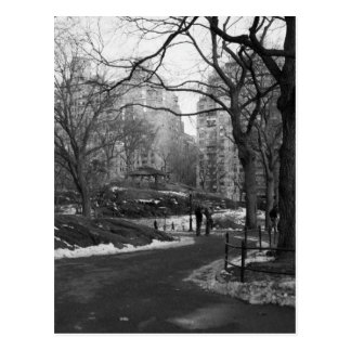 Schwarz-weißes NY Central Park Postkarte