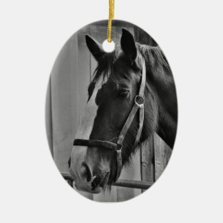 Schwarz-weißes Pferd - Tierphotographie-Kunst Keramik Ornament