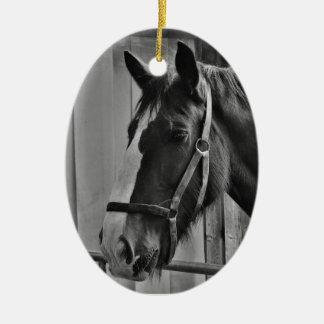 Schwarz-weißes Pferd - Tierphotographie-Kunst Ovales Keramik Ornament