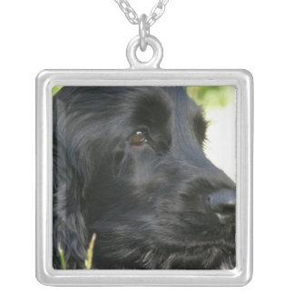 Schwarze Cocker spaniel-Hundehalskette Versilberte Kette