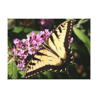 Schwarze Frack-Schmetterlings-Leinwand Leinwanddruck