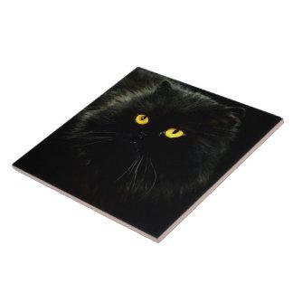 Schwarze Katze Große Quadratische Fliese