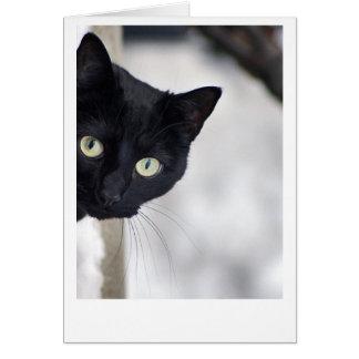 Schwarze Katze Grußkarte