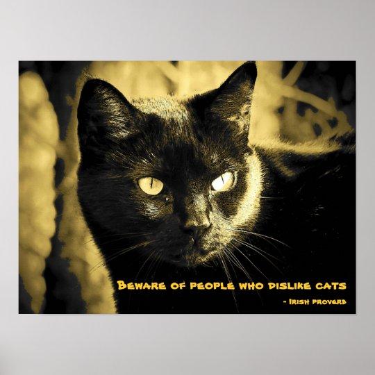 Schwarze Katze Meme Mit Irischem Sprichwort Poster Zazzle De