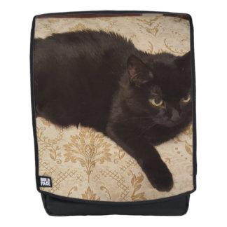 Schwarze Katze Roxie Rucksack