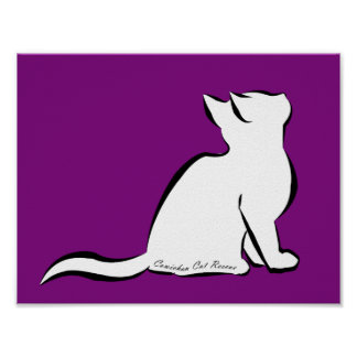 Schwarze Katze, weiße Fülle, innerer Text Poster