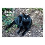 Schwarze Katzen-Geburtstags-Karte 1