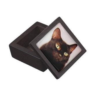 Schwarze Katzen-Geschenkboxen Schachtel
