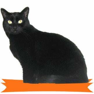 Schwarze Katzen-Halloween-Party-Foto-Skulptur Freistehende Fotoskulptur