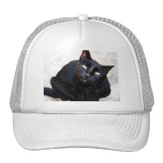 Schwarze Katzen-Porträt Netzmütze