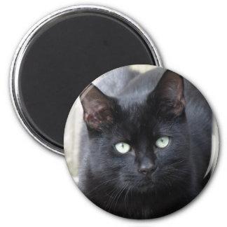 Schwarze Katzen-Vertrautes Runder Magnet 5,7 Cm