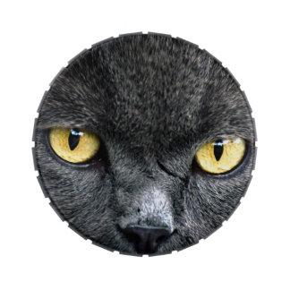 Schwarze Katzenaugen Jelly Belly Dose