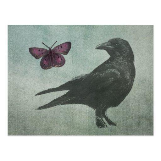 Schwarze Krähen- und Schmetterlingspostkarte Postkarte