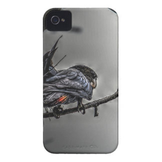 SCHWARZE KUNST-EFFEKTE COCKATOO-QUEENSLANDS iPhone 4 COVER