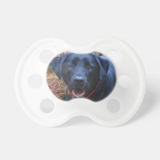 Schwarze Labrador-feine Kunst-Malerei des Schnuller
