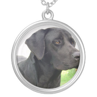 Schwarze Labrador-Hundehalskette Versilberte Kette