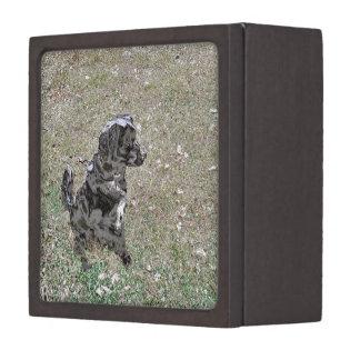 Schwarze Labrador-Hundeuhren Kiste