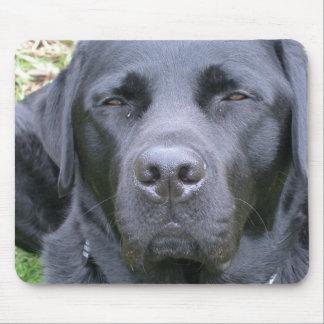Schwarze Labrador retriever-Hundemausunterlage Mousepad