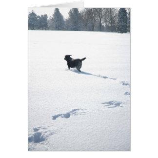 Schwarze Labrador-Spiele im Schnee Karte