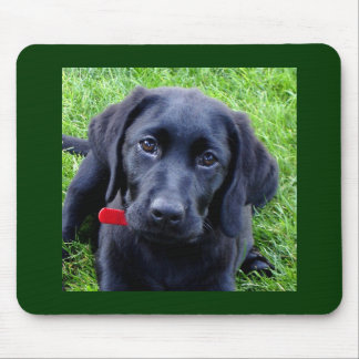 Schwarze Labrador-WelpenMausunterlage Mauspad