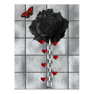 Schwarze Rose der Liebe Postkarten