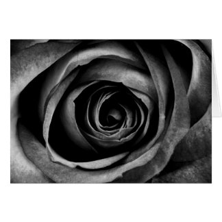 Schwarze Rosen-Blumen-dekoratives mit Karte