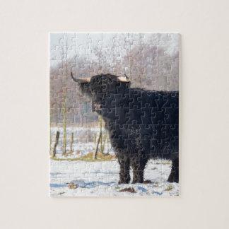 Schwarze schottische Hochländerkuh im Winterschnee Puzzle