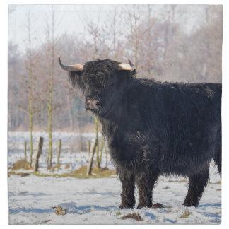 Schwarze schottische Hochländerkuh im Winterschnee Stoffserviette