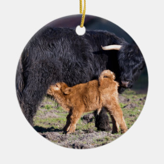 Schwarze schottische Hochländermutterkuh und Rundes Keramik Ornament