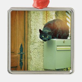 schwarze Straßenkatze Silbernes Ornament