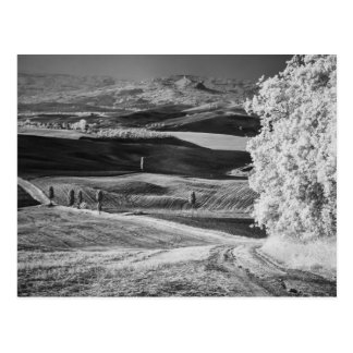 Schwarze u. weiße Ansicht der kurvenreicher Straße Postkarte