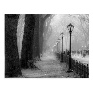 Schwarze u. weiße Landschaft im Central Park Postkarten