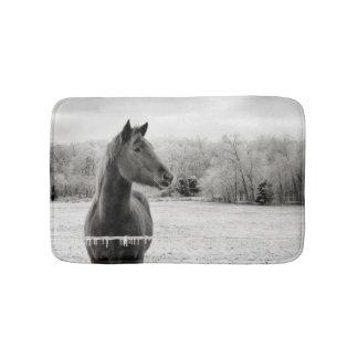 Schwarze u. weiße Winter-Eis-Pferdeduschen-Matte Badematte