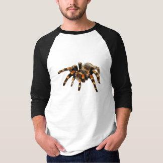 Schwarze und orange Spinne des Tarantula T-Shirt