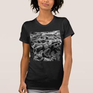 schwarze Zellen oder Bakterien T-Shirt