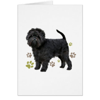 Schwarzer Affenpinscher-Hund Karte