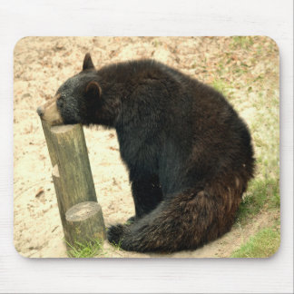 Schwarzer Bär (Alabama, Louisiana, New Mexiko) Mousepad