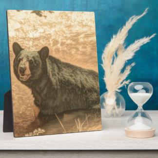 schwarzer Bär der Outdoorsmanwildnisflußwild Fotoplatte