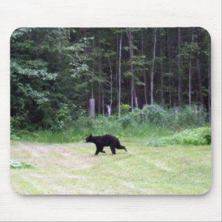 Schwarzer Bär Mousepad