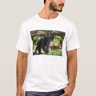 schwarzer Bär, Ursus americanus, Junges bei Anan T-Shirt