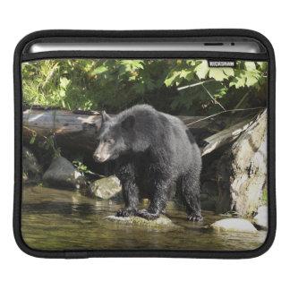 """Schwarzer Bärn-""""Lachsaufdeckungs-"""" wild lebende iPad Sleeve"""
