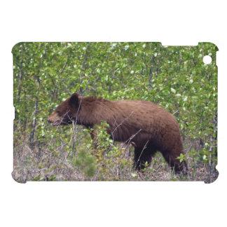 Schwarzer Bärn-Tier-Fotografie Browns iPad Mini Hülle