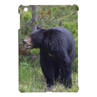 Schwarzer Bärn-Tier-Fotografie-Entwurf iPad Mini Hülle