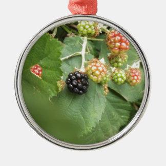 Schwarzer Beerenentwurf Rundes Silberfarbenes Ornament